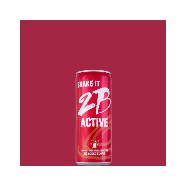 2B Active