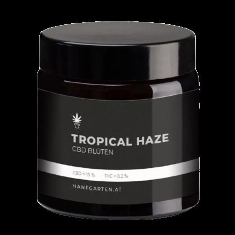 Tropical Haze Outdoor CBD Blüten